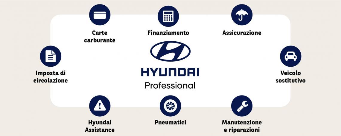 Hyundai Professional Pacchetto di servizi