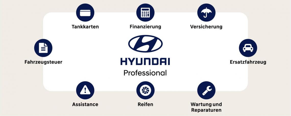 Hyundai Professional Dienstleistungspaket